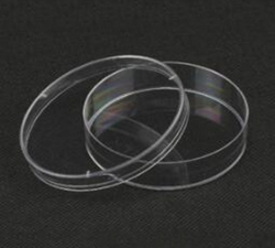 培养皿(FFA003)
